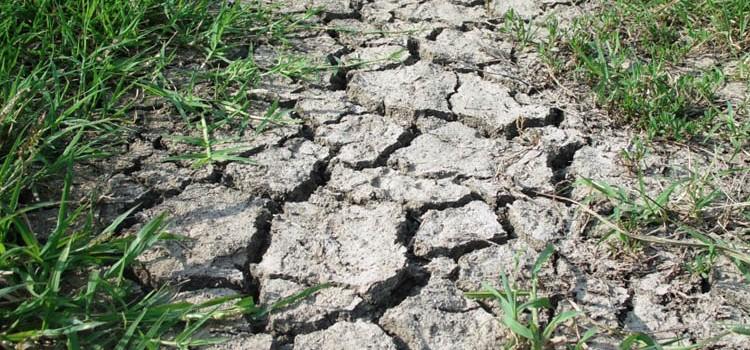 L'Italia verso clima africano: a rischio produzioni agricole e tenuta idraulica